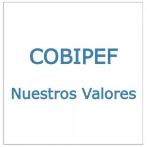 COBIPEF: Nuestros Valores